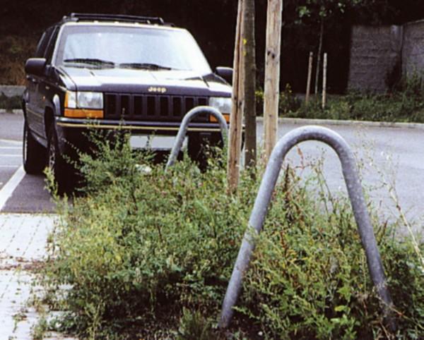 Baumschutzbügel Ø 48 x 2,5 zum Einbetonieren Schutzbügel Stahlrohr